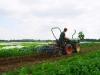 resorteigene Landwirtschaft_Projekt Organic_2